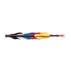 Arrow Vanes & Fletches