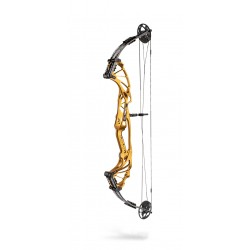 Hoyt Compound Bow Prevail IN STOCK*