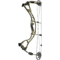 Hoyt - Alphaburner IN STOCK