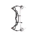 HOYT - Carbon Element RKT  IN STOCK